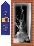 10/18/2010 - 1st Place, Intermediate Division - Altered Reality, Wasatch Camera Club.