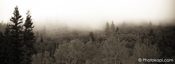 Facebook Cover Photo Misty Morning