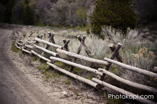 Log Rail Fence Ophir