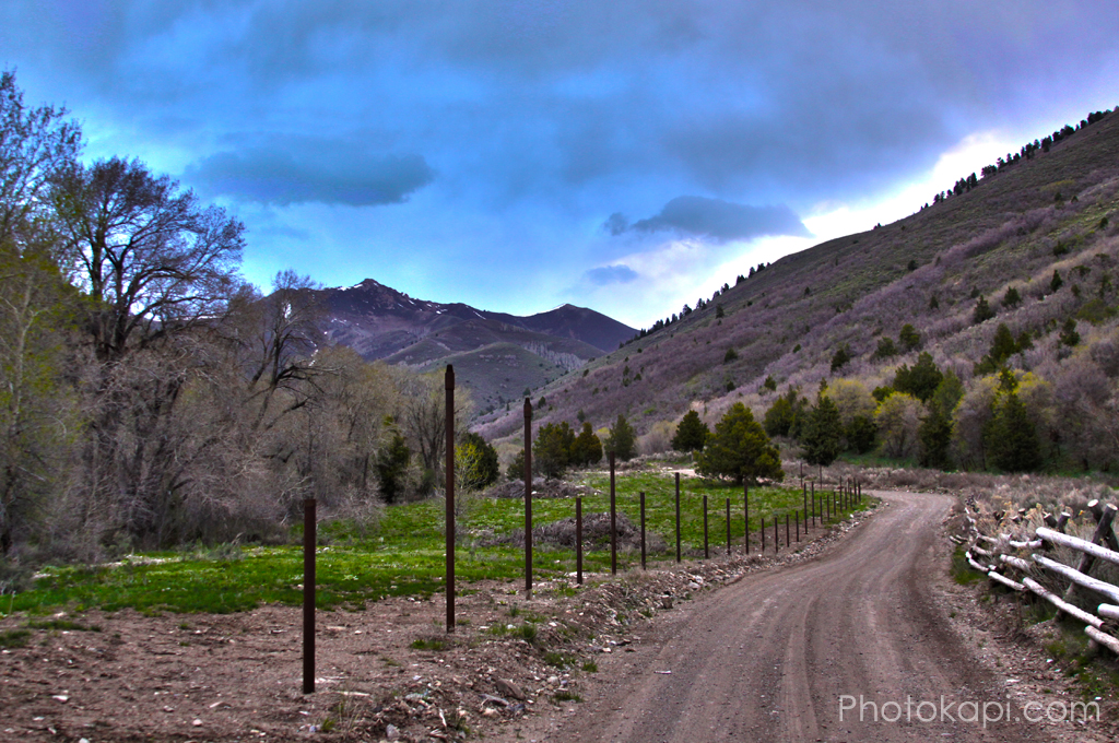 Winding Road HDR