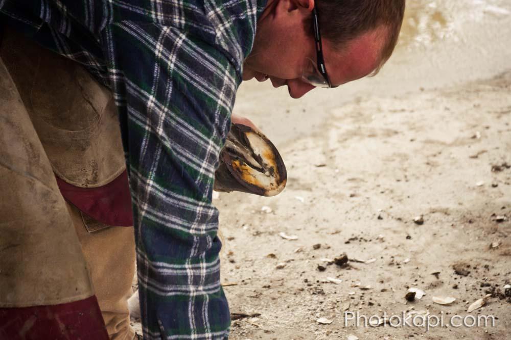 Blackhurst Farrier Service : Photography by Photokapi.com