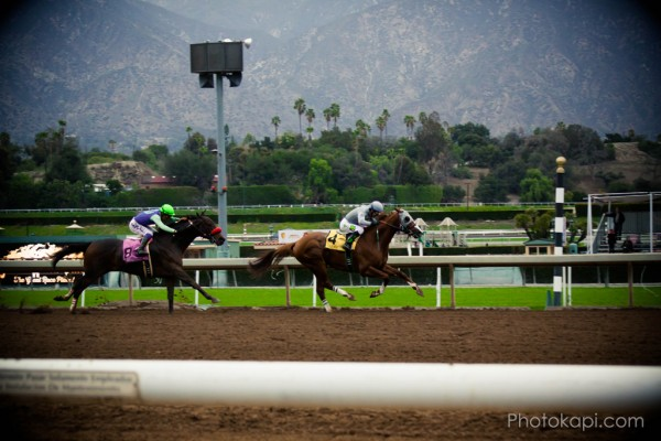 Santa Anita Racetrack | Photokapi.com