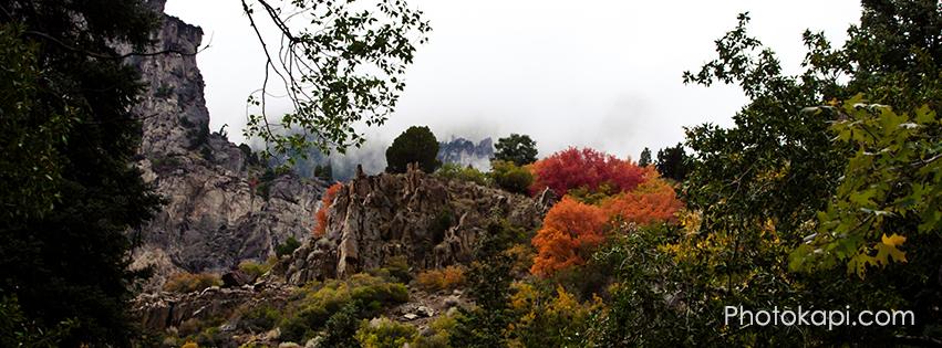Fall Themed Facebook Cover Photos | Photokapi.com