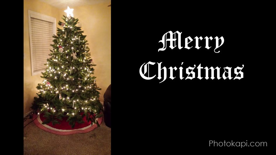 Christmas Tree Time-lapse Preview