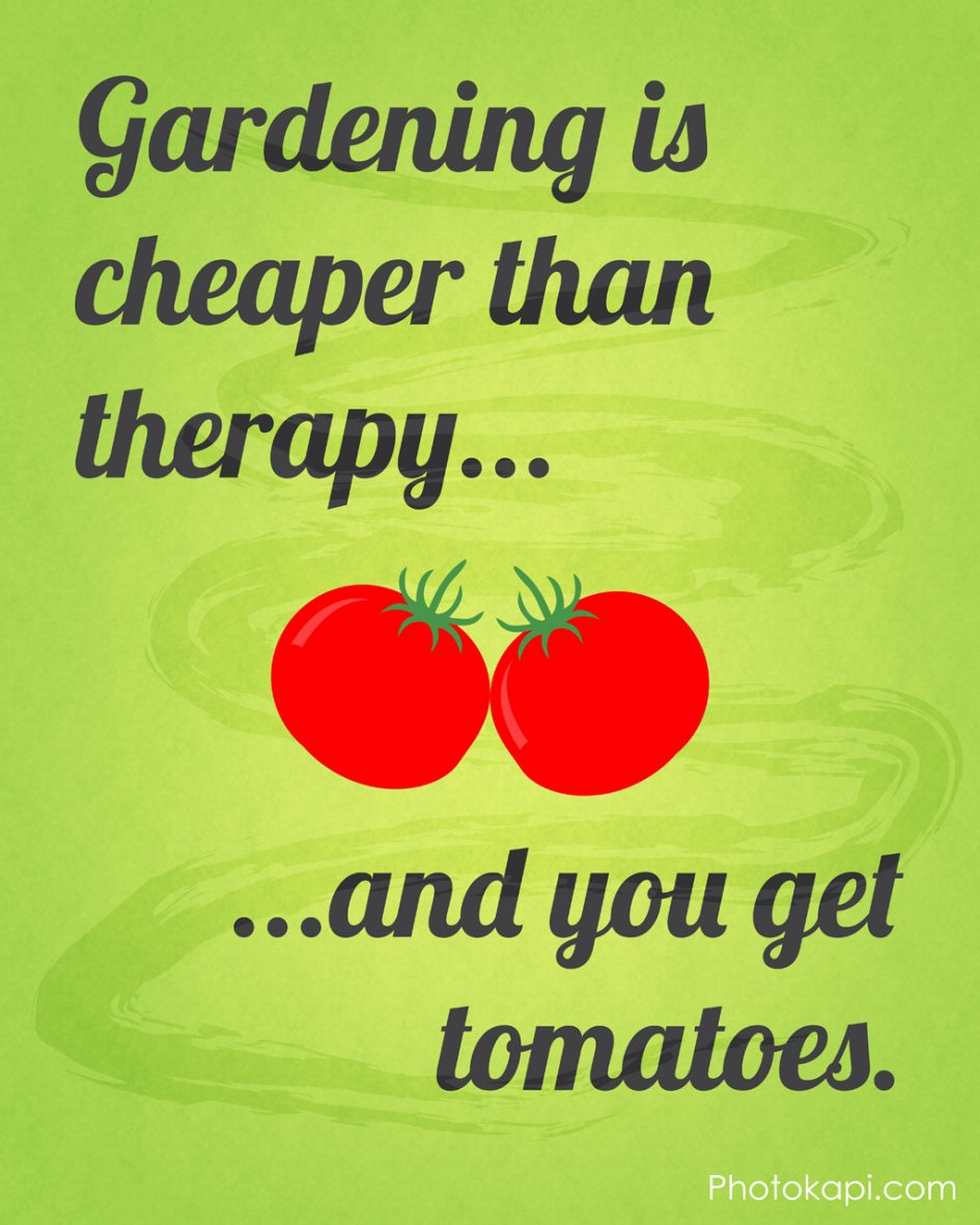 Gardening is Cheaper Than Therapy, And You Get Tomatoes | Photokapi.com