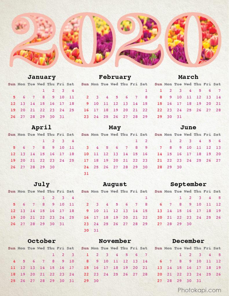 2020 Calendar Tulips | Photokapi.com